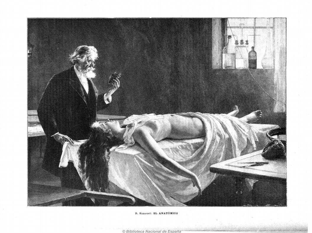 el anatómico.jpg